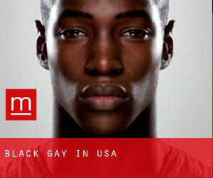 Black Gay in USA