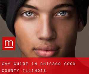 Gay Guide in Chicago (Cook County, Illinois)