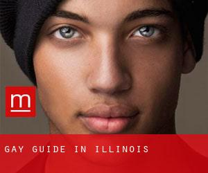 Gay Guide in Illinois