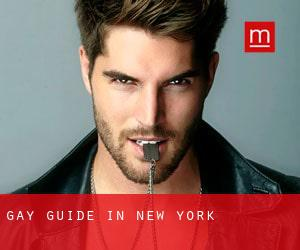 Gay Guide in New York