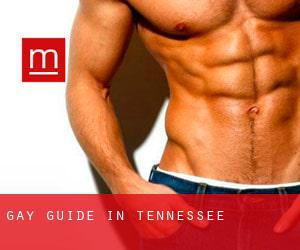 Gay Guide in Tennessee