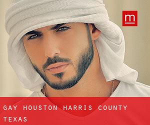 Gay Houston (Harris County, Texas)