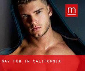 Gay Pub in California
